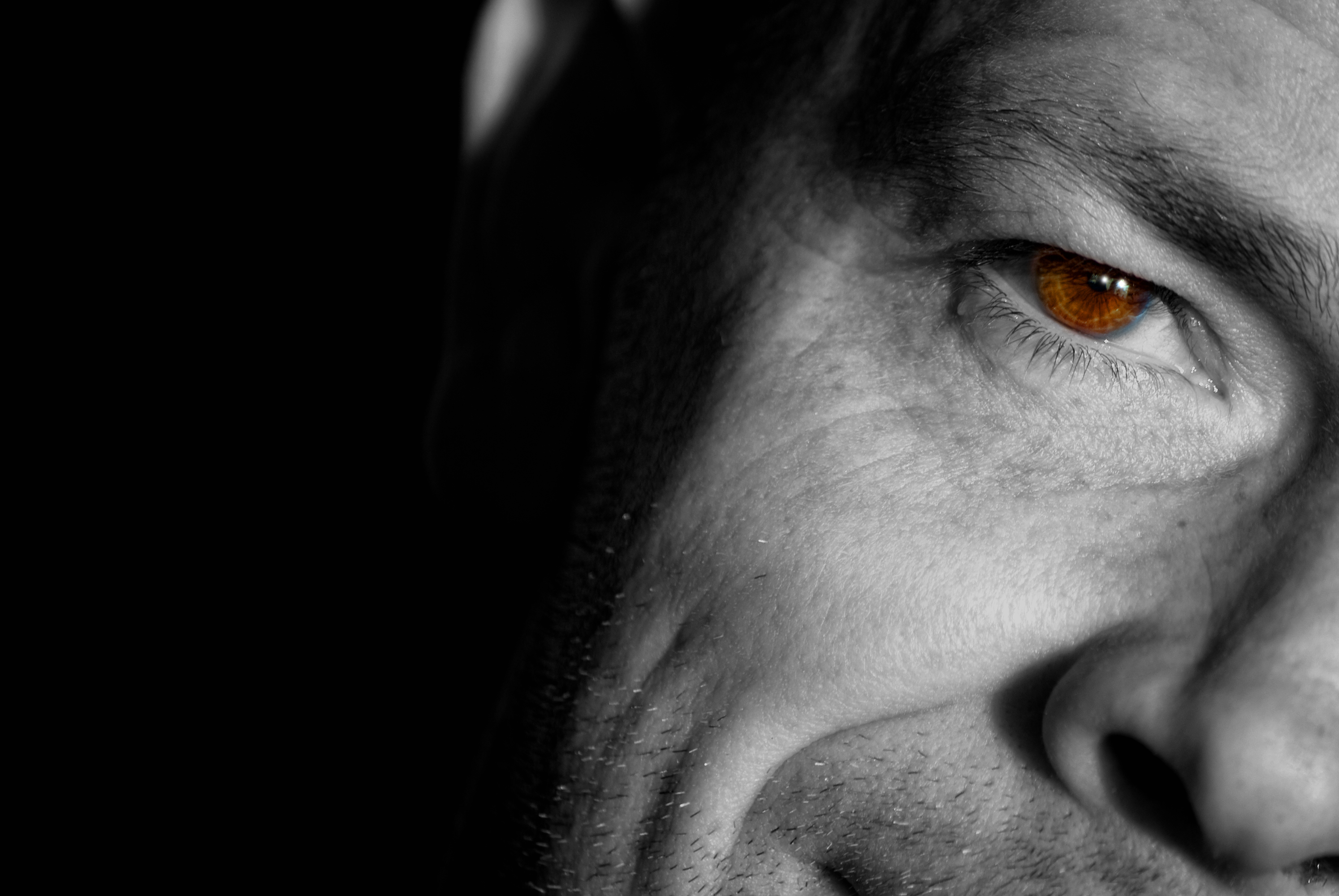 A semi-monochromatic image of a handsome middle aged man staring at you from the shadows.